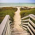 Beach Path by Adam Romanowicz