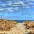 Beach Pathway by Kathy Baccari
