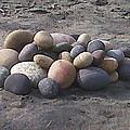 Beach Pebbles by Lew Davis