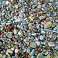 Beach Pebbles by Paul Williams