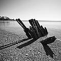 Beach Pilings by Stephanie McDowell