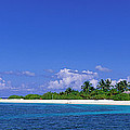 Beach Scene Maldives by Panoramic Images