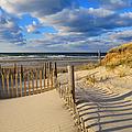 Beach Shadows  by Dianne Cowen