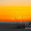 Beach Sunset by Ryan Burton