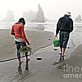 Beach Treasures by Micki Findlay