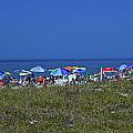 Beach Umbrellas by Amazing Jules