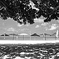 Beach Umbrellas by Ferry Zievinger