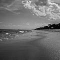 Beach by Valeriy Shvetsov