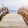 Beach View by Elena Elisseeva