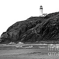 Beach View Of North Head Lighthouse by Robert Bales