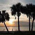 Beach Walk by Aileen Mayer