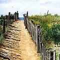 Beach Walk by Barbara Jewell