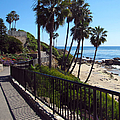 Beach Walkway by Kelly Holm