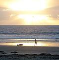 Beachcomber Encounter by Barbie Corbett-Newmin