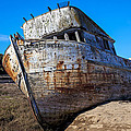 Beached Point Reyes by Garry Gay
