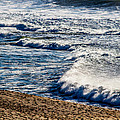 Beaches And Birds by Brian Williamson