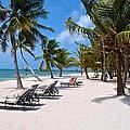 Beachy Belize by Kristina Deane