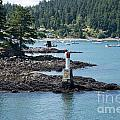 Beacon At Snug Cove by Carol Ailles