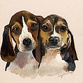 Beagle Babies by Suzanne Schaefer