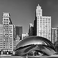 Bean Skyline by Mike Burgquist