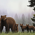 Bear And Cubs by Lia Smazik