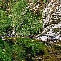 Bear Creek by AR Harrington Photography