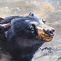 Four Winds Bear by J W Baker