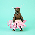 Bear In Flower Skirt by Juj Winn
