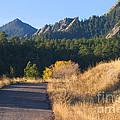 Bear Peak by Steve Krull