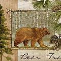 Bear Trail by Paul Brent