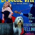 Bearded Collie Art Canvas Print - La Dolce Vita Movie Poster by Sandra Sij