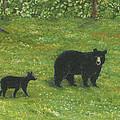 Bears by Lucinda VanVleck
