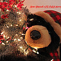 Beary Merry Christmas by Donna Jackson