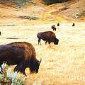 Beasts Of Yellowstone by Lori Dobbs