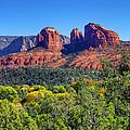 Beautiful Arizona by Deb Buchanan