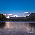 Beautiful Bc by Robert Bales