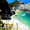 Beautiful Big Sur by Marin Packer