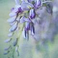 Beautiful Blue by Annie Snel