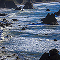 Beautiful California Coast by Garry Gay