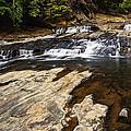 Beautiful Cascade In Western Ghats Karnataka India by Vishwanath Bhat