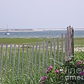 Beautiful Chatham by Michelle Welles