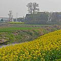Beautiful China's Rural Scenery by Hongtao     Huang