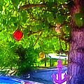Beautiful Colored Glass Ball Hanging On Tree 1 by Jeelan Clark