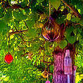 Beautiful Colored Glass Ball Hanging On Tree 2 by Jeelan Clark