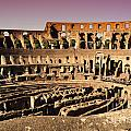 Beautiful Colosseum Rome by Phill Petrovic