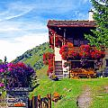 Beautiful Cottage by Alexandros Daskalakis