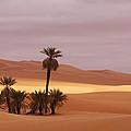 Beautiful Desert by Ivan Slosar