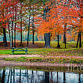 Beautiful Fall Foliage In New Hampshire by Edward Fielding