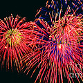 Beautiful Fireworks 14 by Jeelan Clark