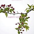 Beautiful Floral Greetings by Sonali Gangane